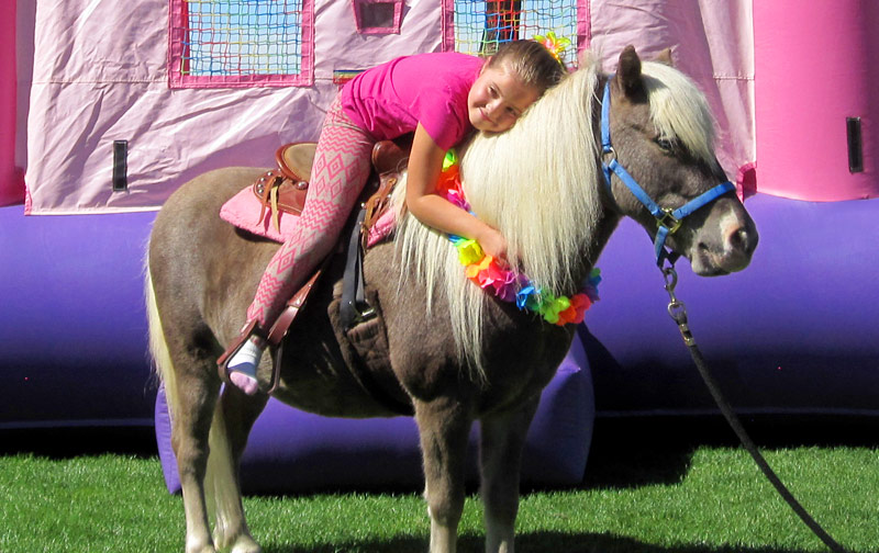 Barstow Bounce House Barstow Pony Ride Rentals Barstow